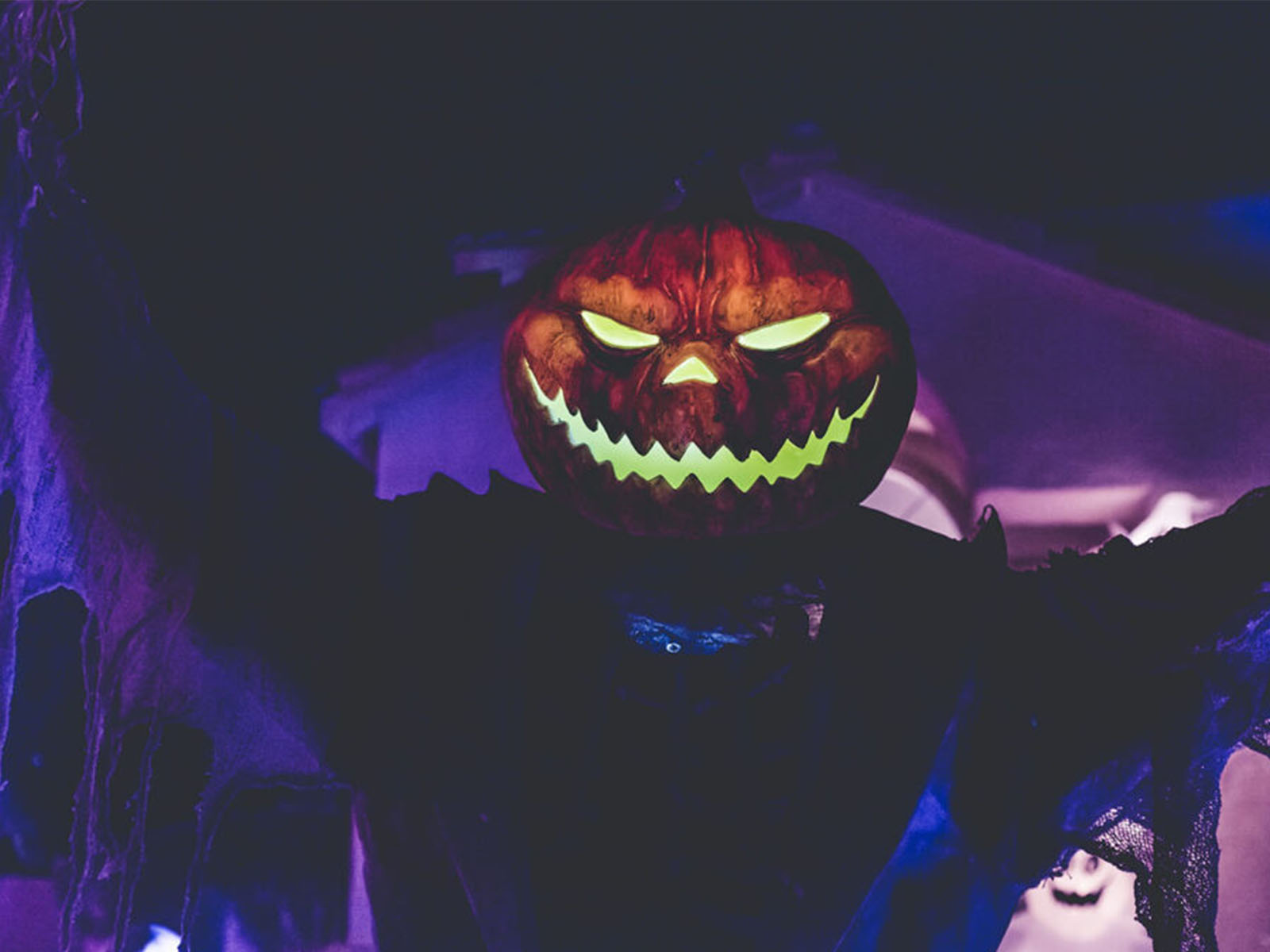 The Best Celebrity Halloween Costumes Photo by NeONBRAND on Unsplash