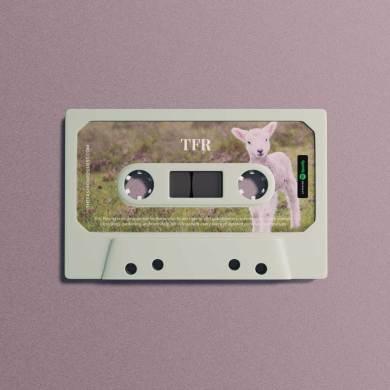 Spotify Cottagecore Inspired Playlist