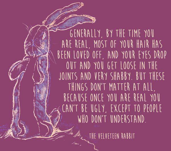 e23b1d77a3144773d37a060c30b340b9--the-velveteen-rabbit-being-ugly