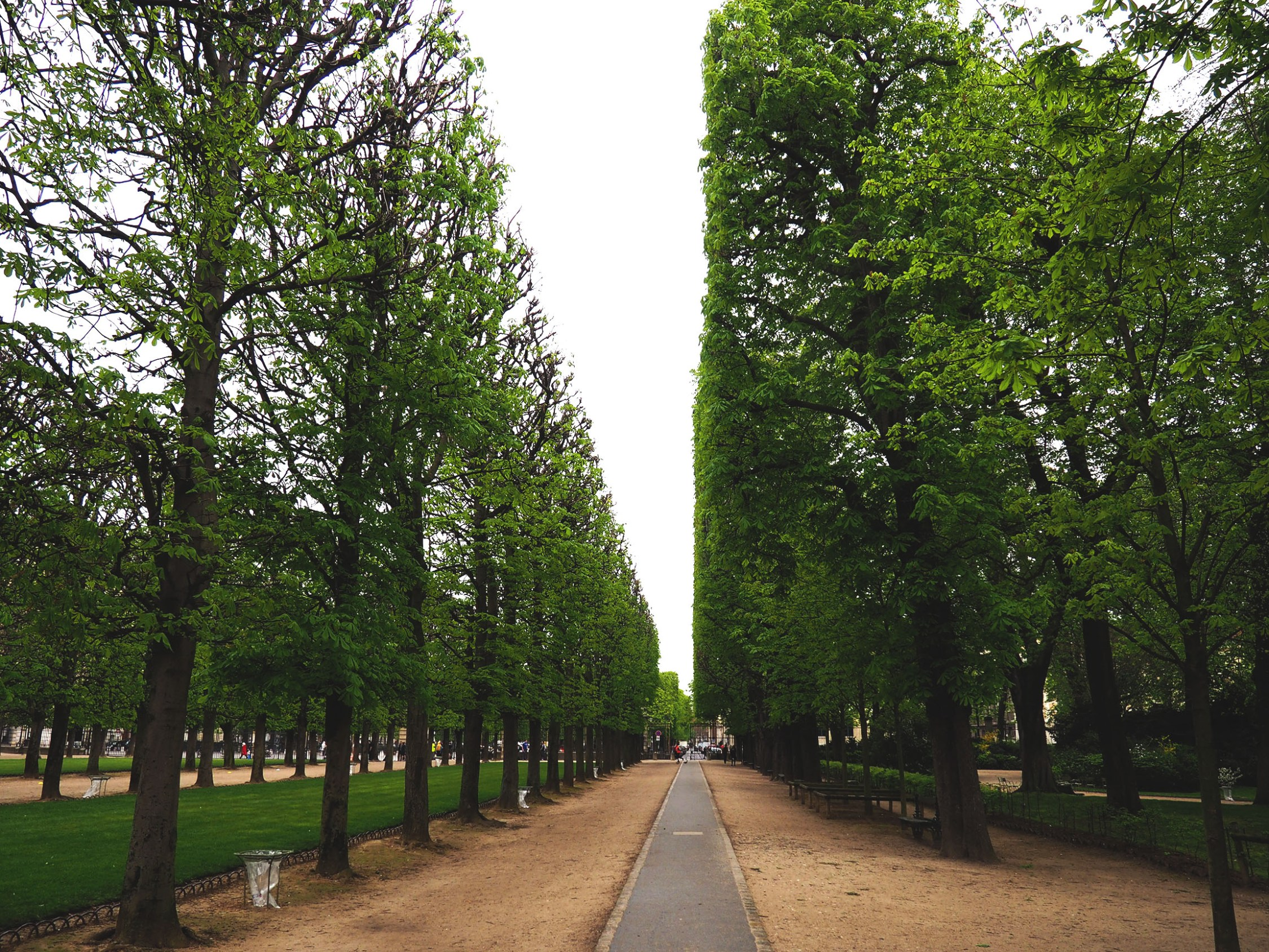 Strolling Through The Luxembourg Gardens