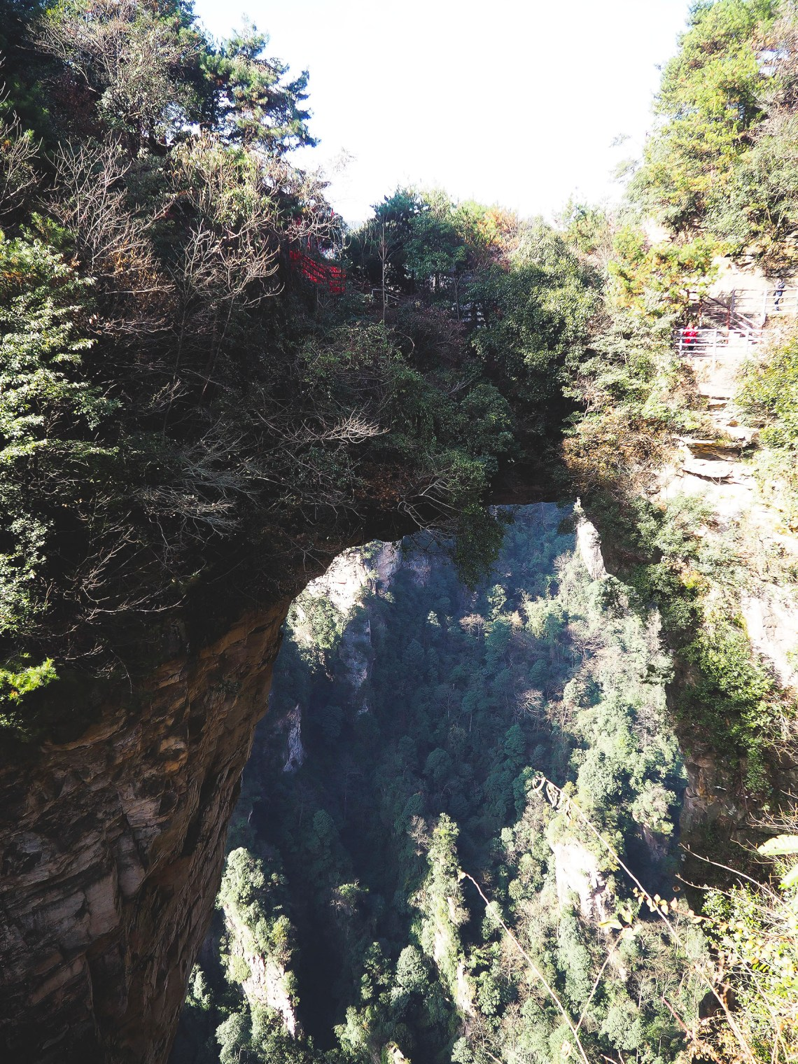 Exploring The Avatar Mountains In Zhangjiajie