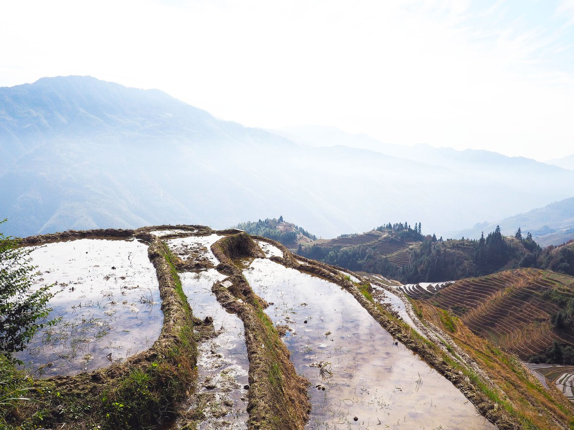 visiting the longsheng rice terraces