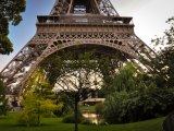 Eiffel Tower greenery