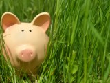 Piggy bank in green grass,closeup background