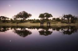 Scene from National Geographic's Into the Okavango