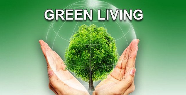 Achieve Regular Financial Savings By Incorporating These Simple Tricks Into Your Life - green living image