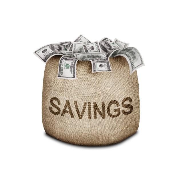 Saving Your Savings from Falling into the Wrong Hands - savings bag image