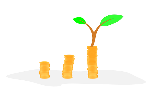 Lifelong money plans - growing money image