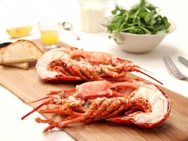 buy the best dressed lobster cooked and ready to eat the fish society