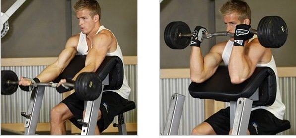 arms workout for mass