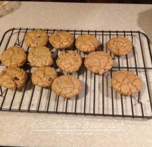 peanut butter cookie recipe PB crave cookie recipe, gluten free cookie recipe