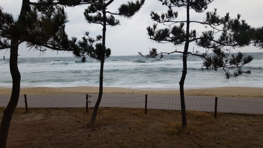Stormy weather on the beach at Gangneung (taken through a small gap in the barbed wire)