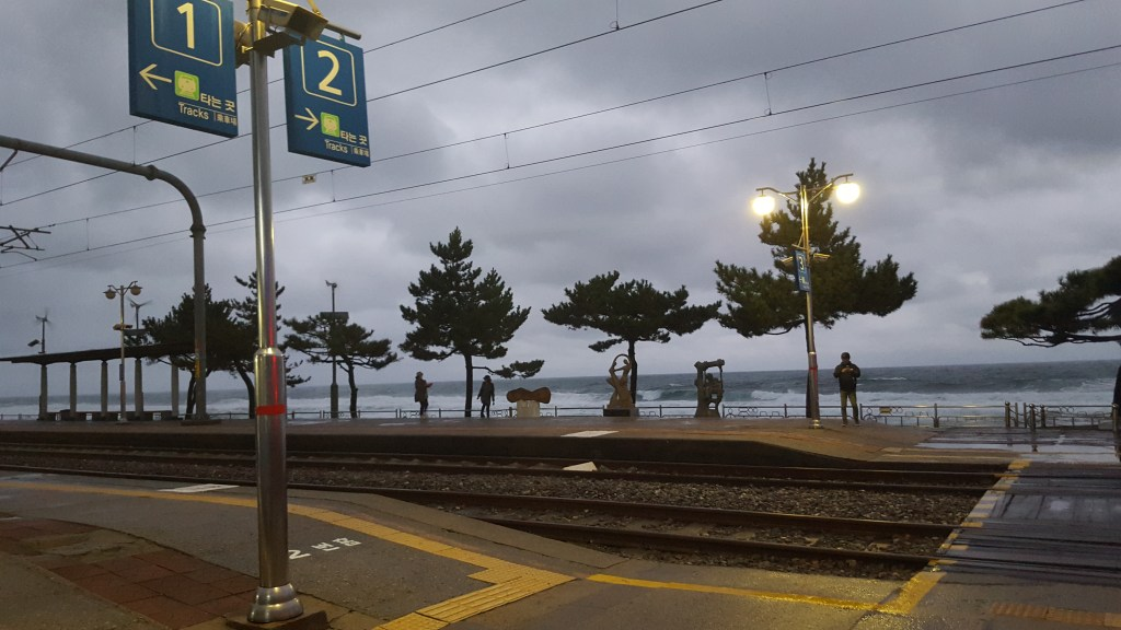Standing on the platform, looking at the waves