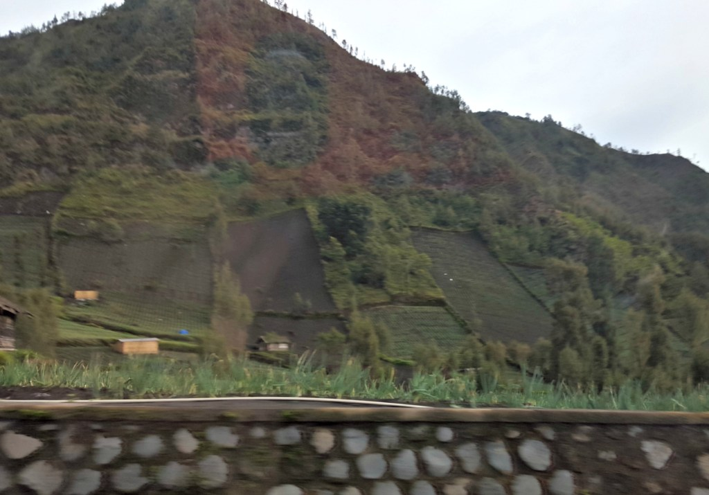 Vertical rice paddies (apologies for the blur, it was taken from a moving car)