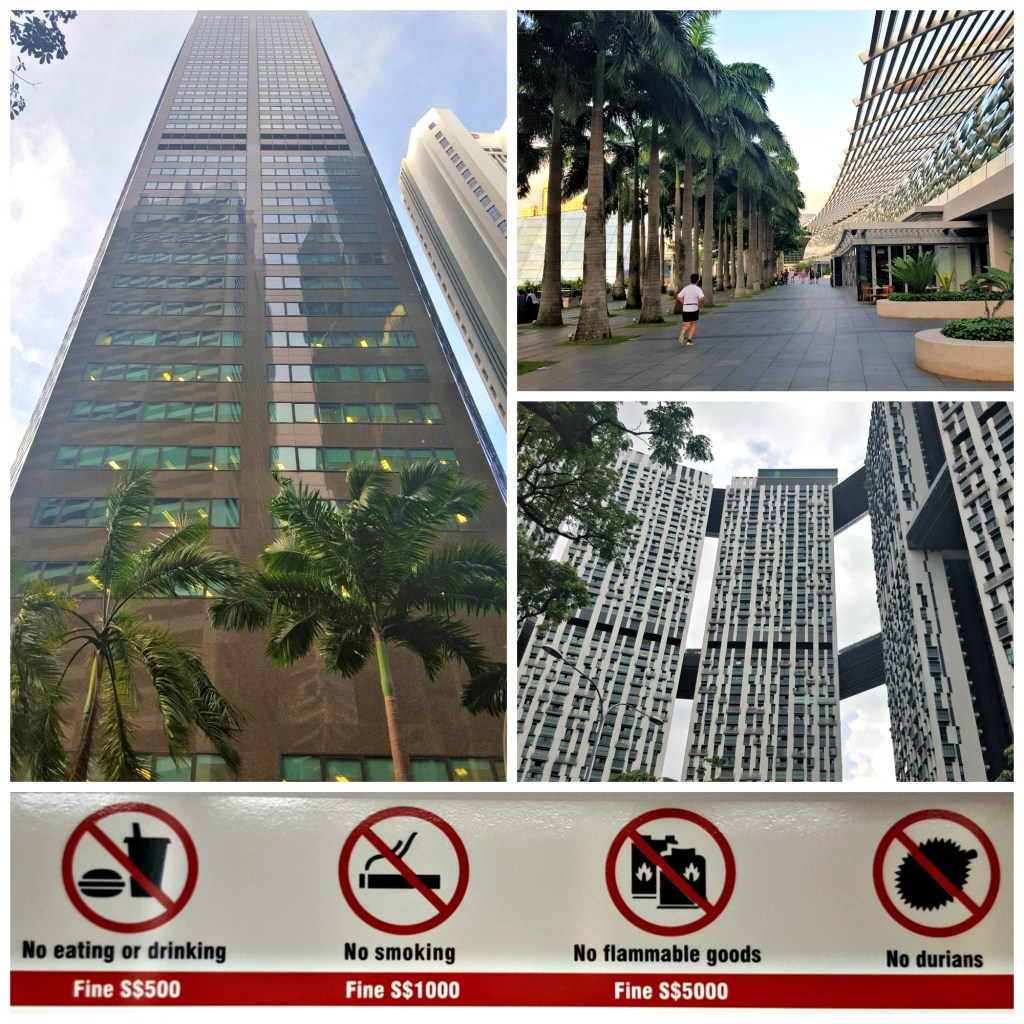 We will give you safety, cleanliness, architectural marvels and manicured palm trees, but in return: NO BLOODY DURIANS