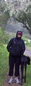 on a drizzly hike