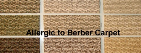 Everything about Allergy free Berber Carpets   The Flooring Lady Everything about Allergy free Berber Carpets