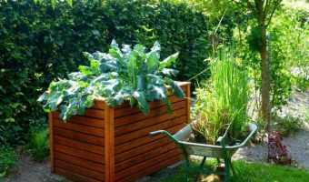 Benefits of Raised Bed Gardens