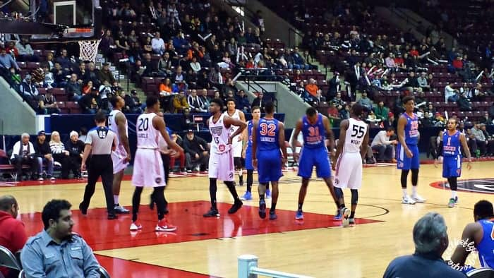 Raptors 905- New Professional Basketball Team. The Flying Couponer.