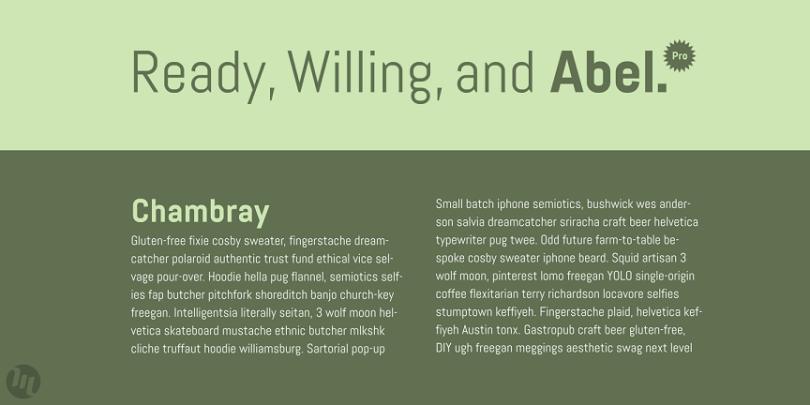 Abel Pro [1 Font] | The Fonts Master