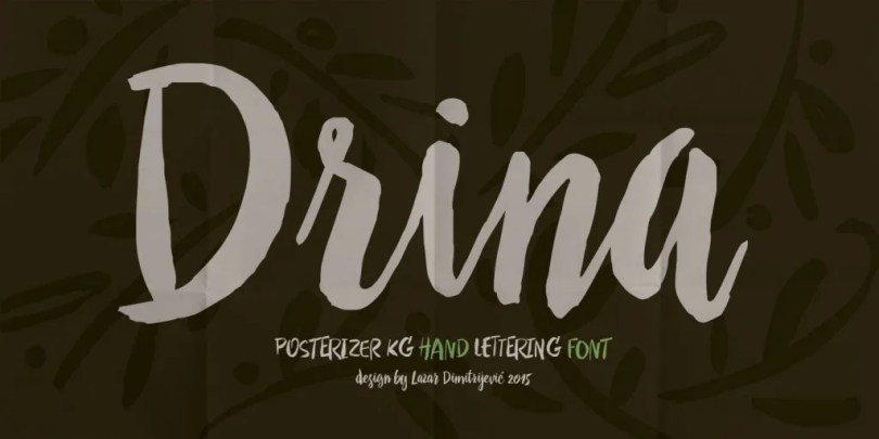 Drina [1 Font] | The Fonts Master