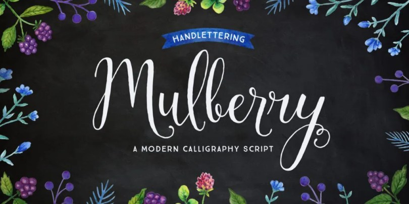 Mulberry Script [6 Fonts] | The Fonts Master