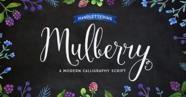 Mulberry Script [6 Fonts]