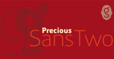 Precious Sans Two [12 Fonts] | The Fonts Master