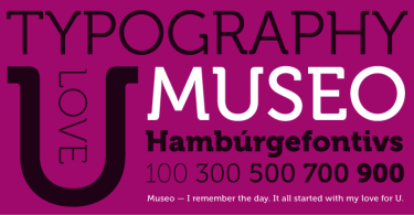 Museo Super Family [10 Fonts] | The Fonts Master