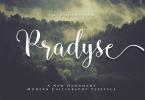 Pradyse Script [1 Font] | The Fonts Master