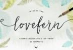 Lovefern Font + Swashes [4 Fonts] | The Fonts Master