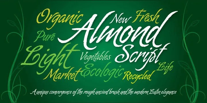 Almond Script [2 Fonts]   The Fonts Master