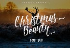 Christmas Beauty Font Duo + Swashes [3 Fonts] | The Fonts Master