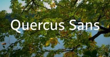 Quercus Sans Super Famıly [16 Fonts]   The Fonts Master
