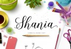 Shania Script [1 Font] | The Fonts Master