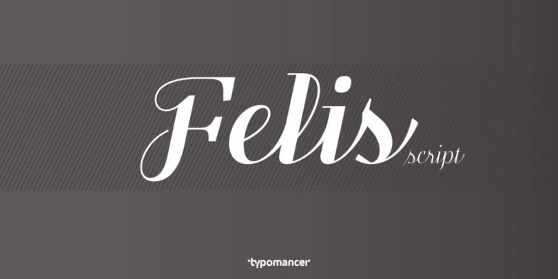 Felis Script [5 Fonts] | The Fonts Master