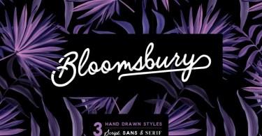 Bloomsbury - Script, Sans & Serif [3 Fonts]