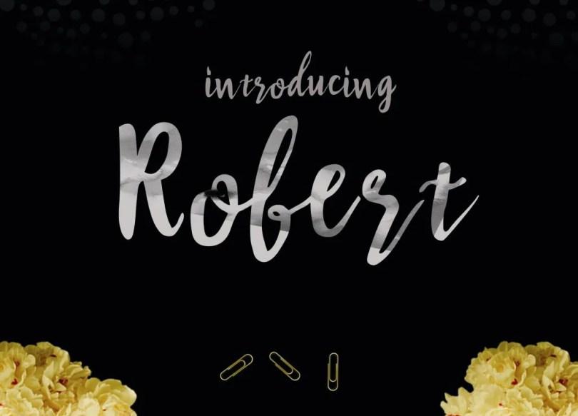 Robert Brush [1 Font] | The Fonts Master