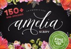 Amelia Script - Fine Version [1 Font] | The Fonts Master