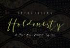 Holdenisty [1 Font] | The Fonts Master