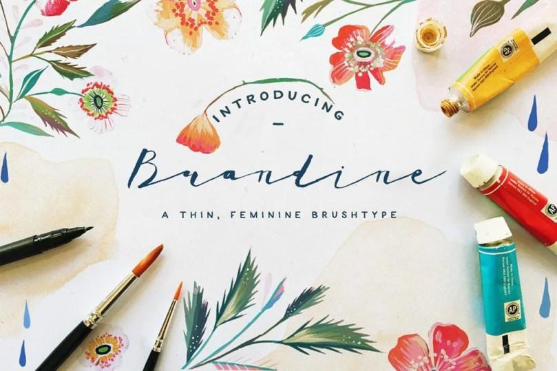 Brandine [1 Font]   The Fonts Master