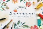 Brandine [1 Font] | The Fonts Master