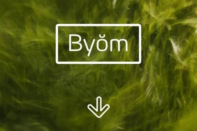 Byom [5 Fonts] | The Fonts Master