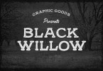 Black Willow [2 Fonts] | The Fonts Master