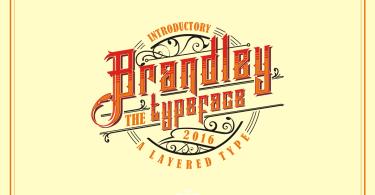 Brandley [4 Fonts]   The Fonts Master