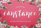 Constance [3 Fonts] | The Fonts Master