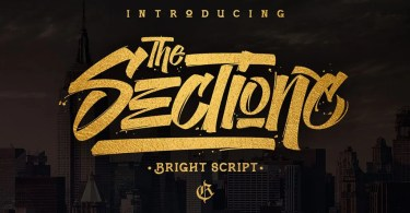 The Sectione Bright [2 Fonts]