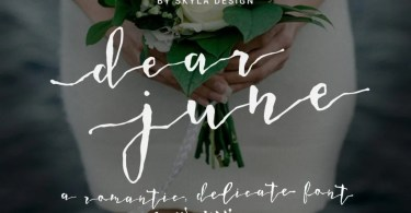Dear June [1 Font] | The Fonts Master