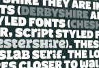 The Shire Types Pro [6 Fonts] | The Fonts Master