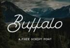 Buffalo Script [1 Font] | The Fonts Master